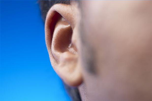 hair ears