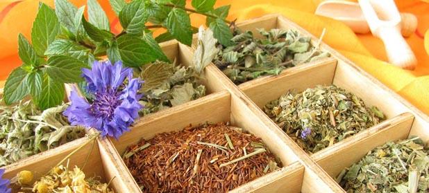 Different tea pots, bowls and herbs