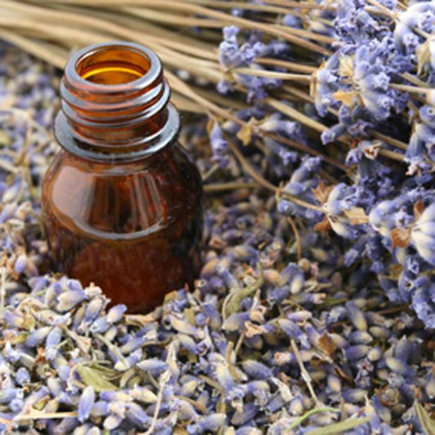 Essential oil treatment (tea tree oil)