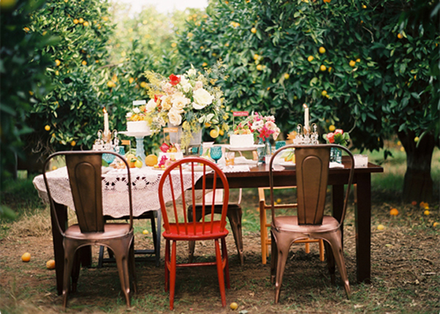 Outdoor Dinner Party