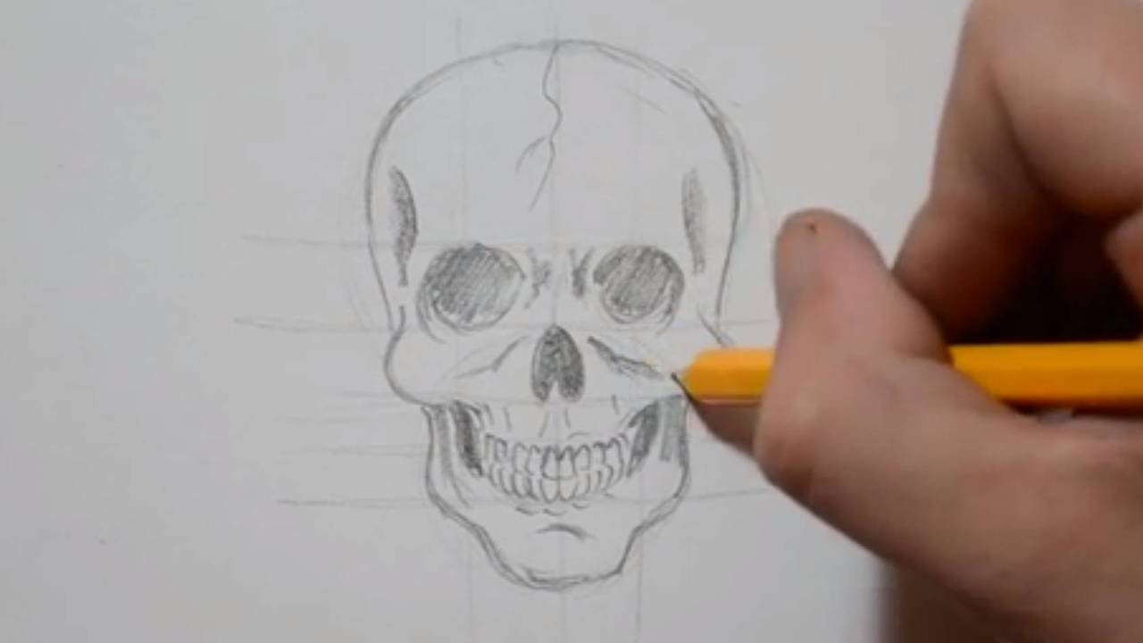 Photo of How to Draw a Skull from Scratch