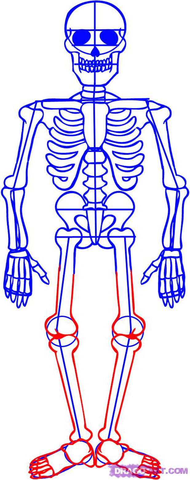how-to-draw-a-skeleton-step-6_1_000000012955_5