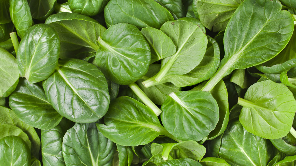 spinach top benefits eating spinach