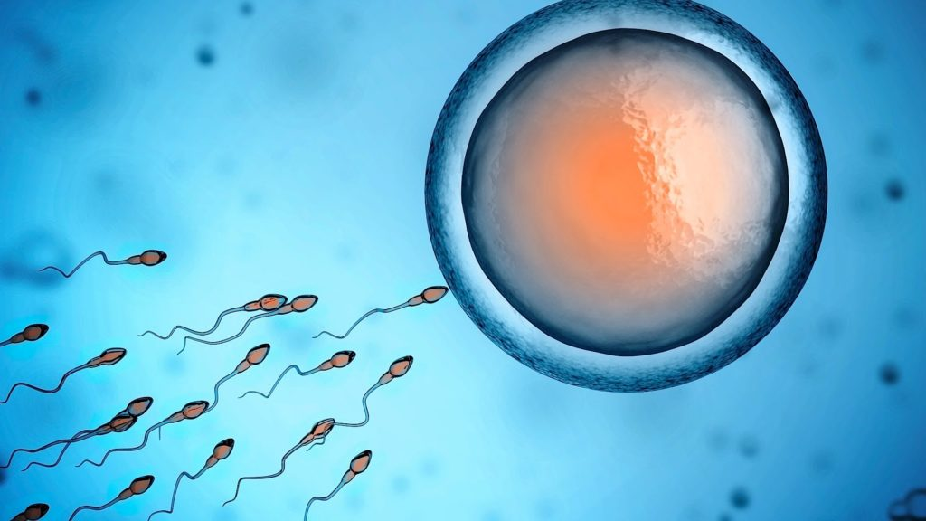 infertility disease causes inventory possible treatments