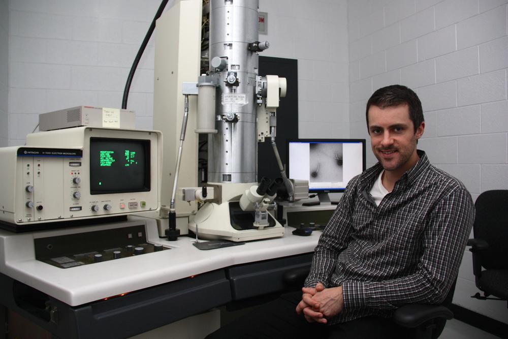 microsoft solve cancer disease next ten years