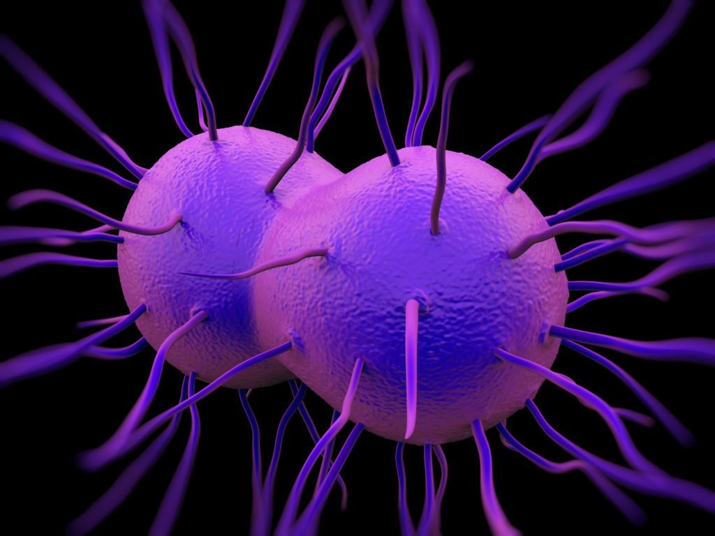 gonorrhea disease risks possible treatments