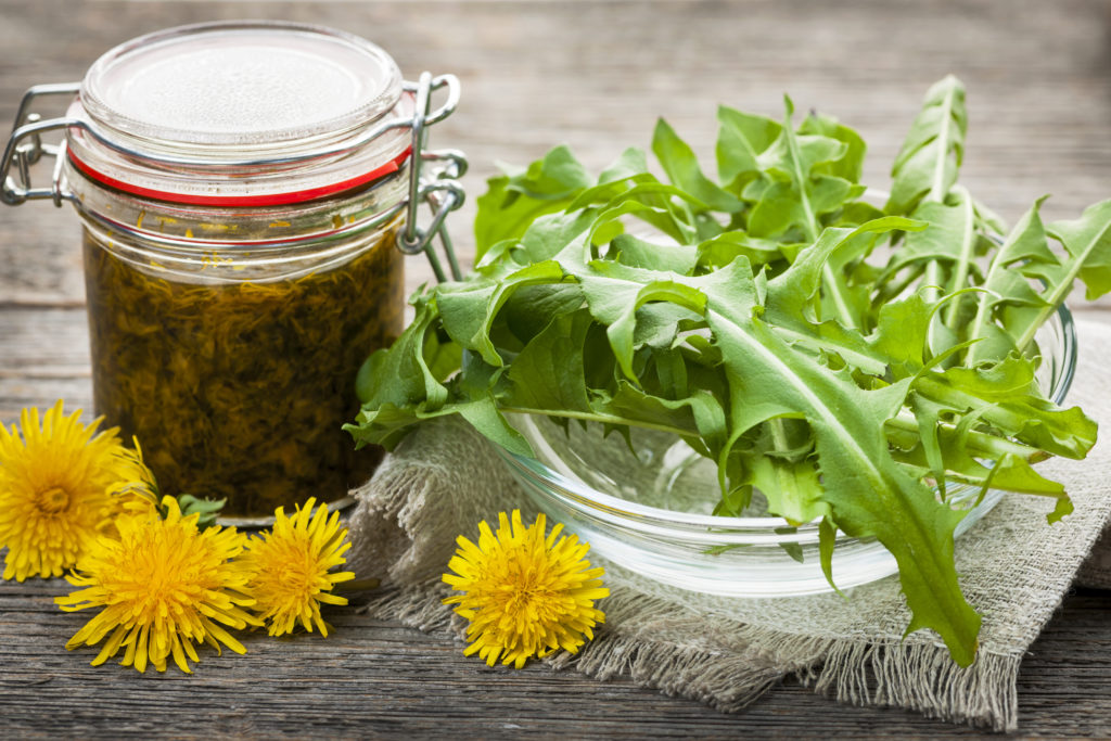 Photo of Dandelion: the Amazing Benefits on Your Health